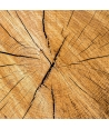 """Venature di Legno"" - Light wood"