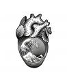 Heart 1 By Old Skull Tattoo